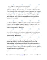 Tuuve Aro 'Satumaa' |Analyysi |Arvosana 7