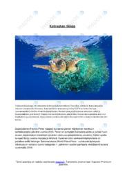 Valokuva-analyysi | Analyysi |Arvosana 10