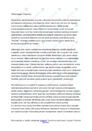Mepschen | Reflektiopaperi | Arvosana 10